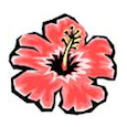 kailua vacation rentals