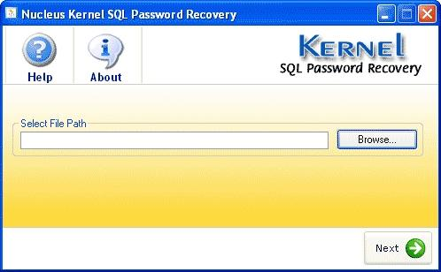 Download Kernel SQL Password Recovery
