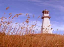 Download Lighthouse Gallery Screensaver