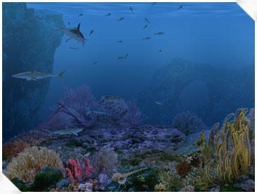 Download Living 3D Sharks