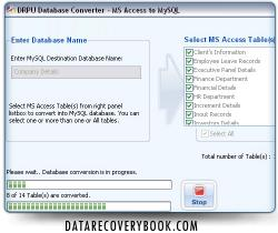 Download MS Access to MySQL Converter Program