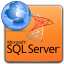 ms sql server paradox import, export & convert software