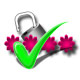 MSN Email Password Recovery