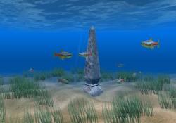 Download Neon Tetra Aquarium Screensaver
