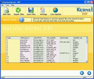 Download Nucleus Kernel DBF Repair Software