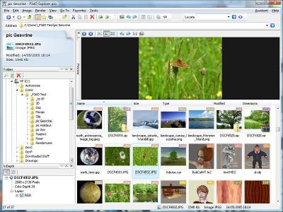 Download P3dO Explorer