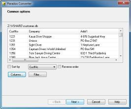 Download Paradox Converter