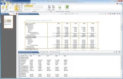Download PDF2XL Enterprise: Convert PDF to Excel
