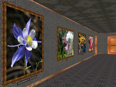 Download Phota Flowers Screensaver