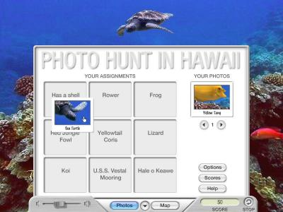 Download Photo Hunt in Hawaii