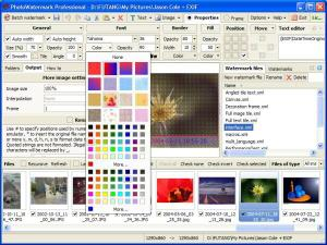 Download PhotoWatermark Professional