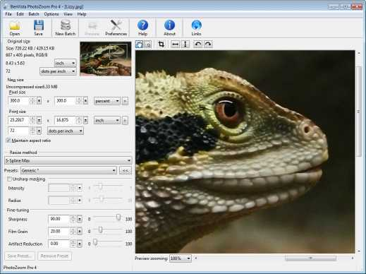 Download PhotoZoom Pro 6