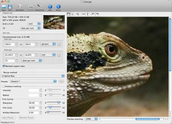 Download PhotoZoom Pro 6 for Mac