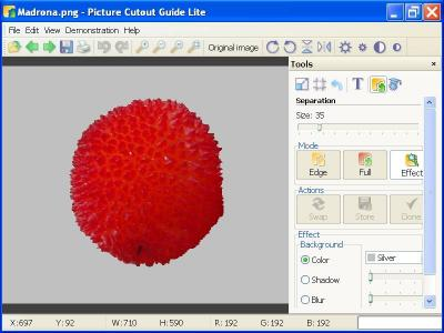 Download Picture Cutout Guide Lite
