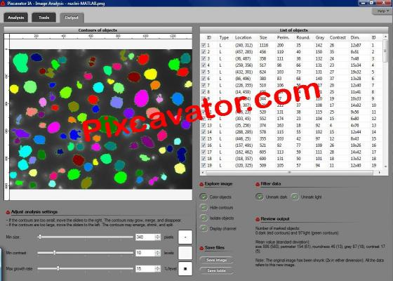 Download Pixcavator Image Analysis Software