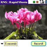 Download Rapid Movie