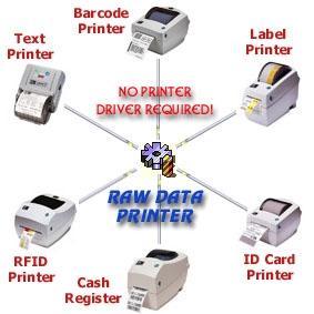Download Raw Data Printer Component