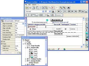 Download Reportizer (DE)