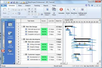 Download RiskyProject Professional