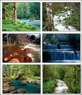 Download Rivers In Nature Screensaver