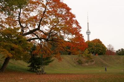 Download Scenic Autumn Screensaver