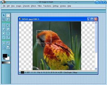 Download SID Image InDepth