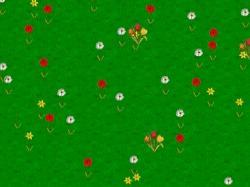 Download Spring Wildflowers Screensaver