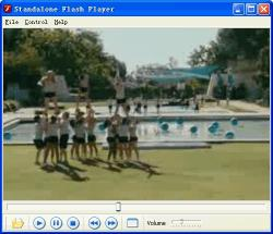 Download Standalone Flash Player