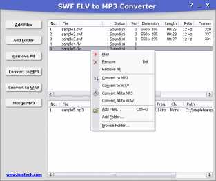 SWF FLV to MP3 Converter