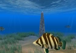 Download Tiger Fish Screensaver