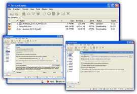 Download Torrent Captor
