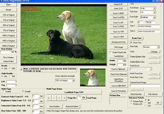 Download VISCOM Image Viewer CP Pro ActiveX SDK