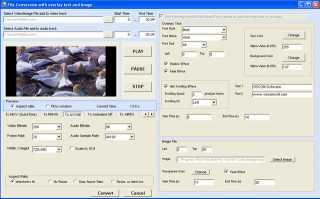 Download VISCOM Video Converter SDK ActiveX