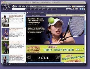 Download Washington Huskies IE Browser Theme