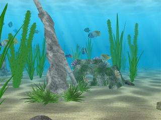Download Water Life