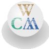 Web Cartoon Maker Player