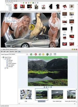 Download Web Photo Search