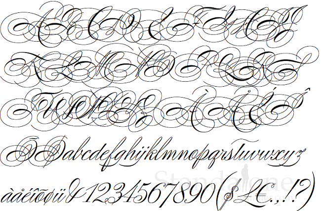 One Of The Most Elegant Calligraphic Font Styles Ever Created Poem Script Pro Has Various Unique Strokes And Thin Cursive Details