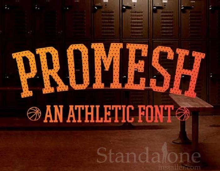 Promesh